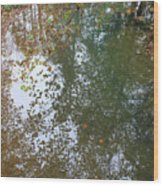 Reflection In Stream Wood Print