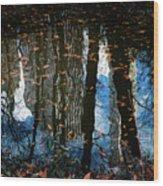 Reflection 3 Wood Print