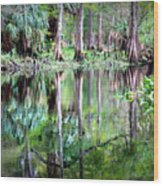 Reflection Of Cypress Trees Wood Print