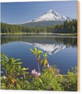 Reflection Of Mount Hood In Trillium Wood Print by Craig Tuttle