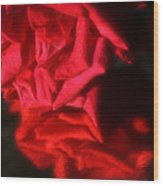 Reflection Of Red Roses Wood Print