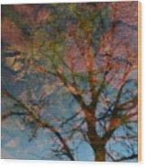Reflection Of Self Wood Print