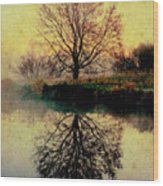 Reflection On Golden Pond Wood Print
