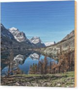 Reflection On St Mary Lake Through Burned Trees Wood Print