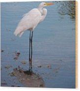Reflection On Stilts Wood Print