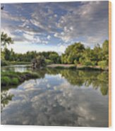 Reflection On The Poudre River Wood Print