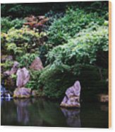 Reflection Pond  Wood Print
