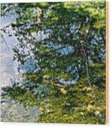 Reflection Pool Wood Print