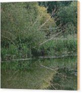 Reflection September 2015 Wood Print