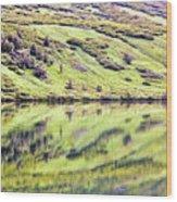 Reflections Alaska  Wood Print