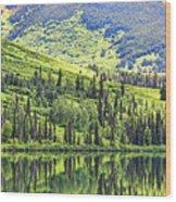 Reflections Alaska II Wood Print