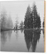 Reflections And Fog Wood Print