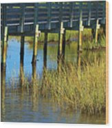 Reflections And Sea Grass Wood Print