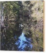 Reflections At Camps Creek  Wood Print