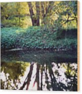 Reflections At Wyeth Wood Print