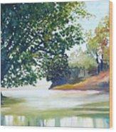 Reflections Wood Print by Carola Ann-Margret Forsberg