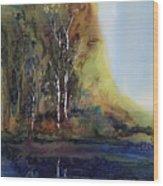 Reflections Wood Print by Carolyn Doe