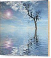 Reflection's Wood Print