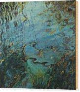 Reflections IIi Wood Print