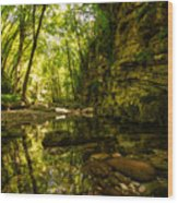 Reflections In Rio Pelago Wood Print