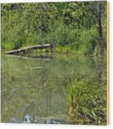 Reflections In The Pond Wood Print