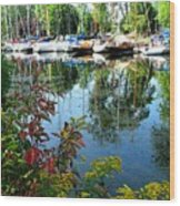 Reflections In The Pool Wood Print