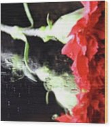 Reflections Of A Carnation Wood Print