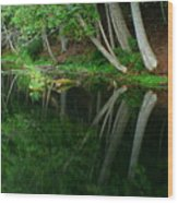 Reflections Of A Forest Wood Print