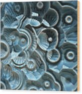 Reflections Of A Fractal Fossil Wood Print