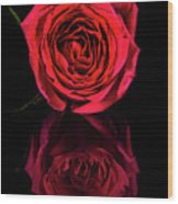 Reflections Of A Red Rose Wood Print