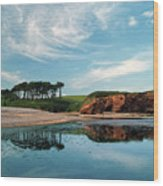 Reflections Of Budleigh Wood Print