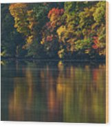 Reflections Of Colors Wood Print