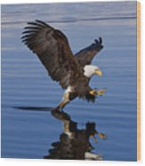 Reflections Of Eagle Wood Print by John Hyde - Printscapes