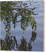 Reflections Of Life Wood Print