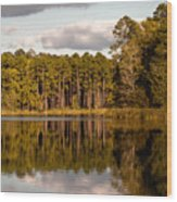 Reflections Of Nature Wood Print