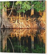 Reflections Of Our Roots Wood Print
