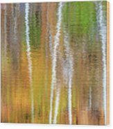 Reflections Of The Canadian Fall Wood Print