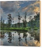 Reflections Of The Morning Wood Print