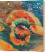 Reflections Of The Universe No. 2051 Wood Print