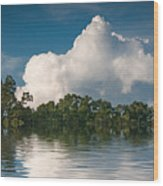 Reflections Of Trees And Clouds Wood Print