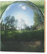 Reflections On A Steel Sphere Wood Print