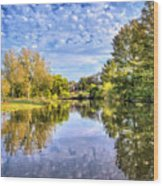 Reflections On Cibolo Creek Wood Print