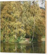 Reflections On Dunmore Wood Print