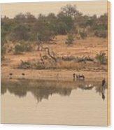 Reflections On Safari Wood Print
