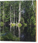 Reflections On The Ocklawaha River  Wood Print