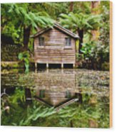 Reflections On The Pond Wood Print