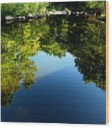 Reflections Trees Wood Print