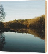 Reflections Wood Print by Valeria Donaldson
