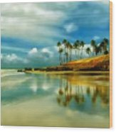 Reflective Beach Wood Print