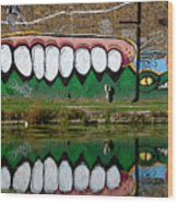 Reflective Canal 12 Wood Print